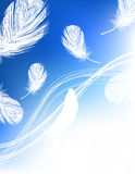 Blue feather background. Illustration, AI file included Stock Photos