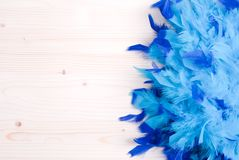Blue feather boa on light board on the left with space for text Royalty Free Stock Photography