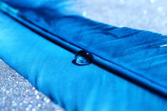 Blue Feather. A bright blue feather with a clear water droplet stock photos
