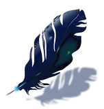Blue feather. Dark blue feather with shadow on white background Stock Images