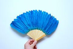 Blue feather fan Royalty Free Stock Photos