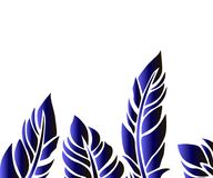 Blue feather gradient - contour vector. Blue feather gradient on a white background - an idea for framing a frame Stock Photo