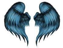 Blue Feather Wings. Blue, hand painted in photoshop fantasy feather wings Stock Images