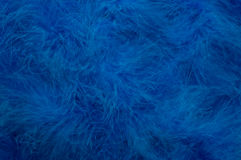 Blue Feathered Background Stock Images