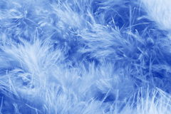 Blue feathers background - stock photo. Blue feathers background - feather abstract pattern royalty free stock photography
