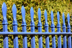 Blue fence with hedge Stock Photos