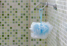 Blue Fiber Scrub hanging on rail in the bathroom with green Royalty Free Stock Images
