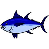 Blue fin Tuna Stock Image