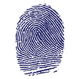 Blue Fingerprint. Jpeg Illustration and Vector Stock Image