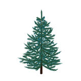 Blue fir tree. Christmas symbol. New Year. On a white background isolated illustration. Blue fir tree. Christmas symbol. New Year. On a white background isolated Royalty Free Stock Image