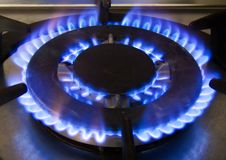 Blue fire from domestic kitchen stove, gas burning flames stock photo