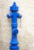 Blue Fire Hidrant Royalty Free Stock Photo