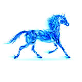 Blue fire horse. Royalty Free Stock Images