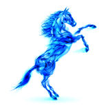 Blue fire horse rearing up. Illustration on white background Stock Photo