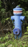 Blue fire hydrant Stock Image