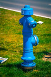 Blue Fire Hydrant, source of water service to Stock Images