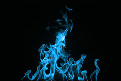 Blue Fire isolated on a black background. Royalty Free Stock Photos