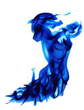 Blue flammed lion Royalty Free Stock Photo