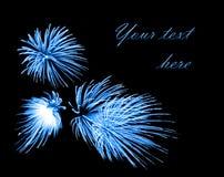 Blue firework Royalty Free Stock Photo