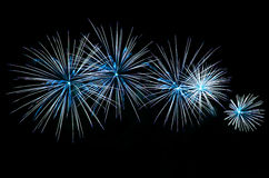 Blue fireworks on black background. Celebrating holidays with colorful fireworks display. Happy New Year 2017 greeting card. Happy Independence Day. Success Royalty Free Stock Images