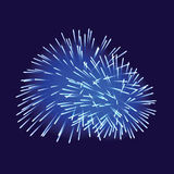 Blue fireworks on dark background. Vector illustration Royalty Free Stock Photos