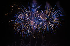 Blue fireworks on the night sky Royalty Free Stock Photos