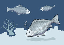 Blue fish. At bottom of sea  illustration Stock Image
