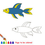 Blue fish. Coloring book for children. Page to be color. Sealife Royalty Free Stock Images