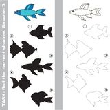 Blue fish. Find true correct shadow. Royalty Free Stock Images