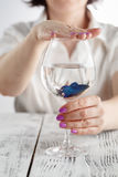 Blue fish in the glass in hands. Clear water concept photo Stock Images