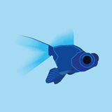 Blue Fish Isolated On Blue Background. Vector Blue Fish Isolated On Blue Background Royalty Free Stock Photography