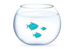 Blue Fishes In Aquarium. Vector Royalty Free Stock Photos