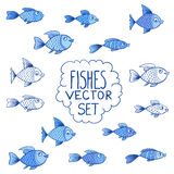 Blue fishes vector set or collection. Aquarium blue fishes - cartoon vector set or collection. Isolated on white background Royalty Free Stock Image