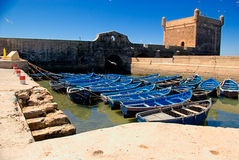 Blue Fishing boats. Fishing boats in harbour Essaouira north Atlantic Morocco North Africa royalty free stock photo