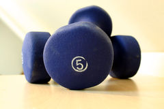 Blue Five Pound Weights Royalty Free Stock Photos