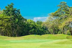 Blue flag in golf course green grass Royalty Free Stock Images