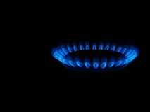 Blue flame. The blue flame of the gas-cooker stock photography