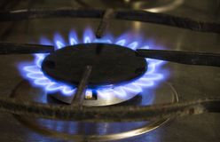 Blue flame of a domestic stove. stock photography