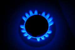Blue Flame of a Gas Cooker Stock Images
