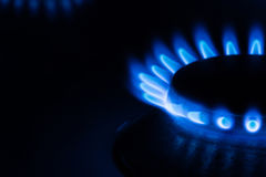 Blue Flames from a gas burner Stock Photography