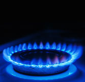 Blue flames of gas Stock Images