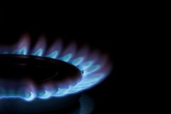 Blue Flames on Gas Cooker Royalty Free Stock Images
