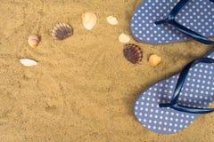 Blue  flip flops,  on sandy beach with seashells stock images