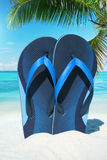 Blue Flip Flops under Plam frond Royalty Free Stock Image
