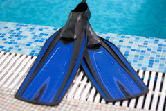 Blue Flippers. Lay on a side of swimming pool Royalty Free Stock Images