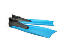 Blue Flippers Royalty Free Stock Image