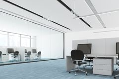 Blue floor open space office interior columns side. Side view of a modern open space office interior with a blue carpet floor, white and glass walls, and Royalty Free Stock Photo