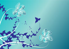 Blue floral backgound. White flowers on blue background Stock Image