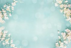 Blue Floral Bokeh Spring Background. Beautiful and peaceful spring flower blossoms and blurred bokeh against a blue background.Image shot from top view royalty free illustration