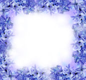 Blue floral frame Stock Photography